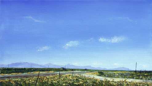 Landscape-26